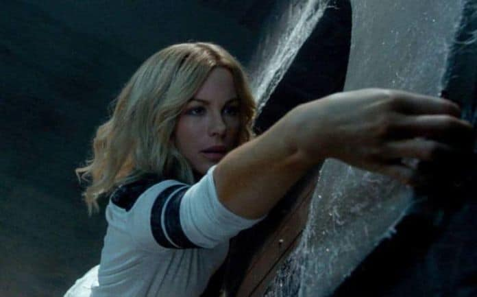 The Disappointments room review