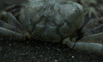 New Death Stranding Trailer Debuts Mads Mikkelsen