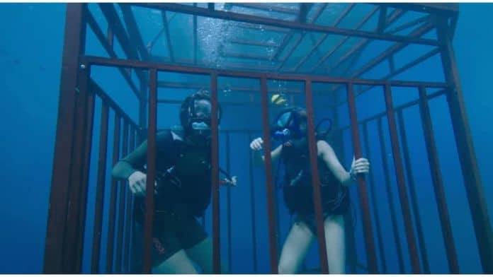 47 Meters Down - Unchained