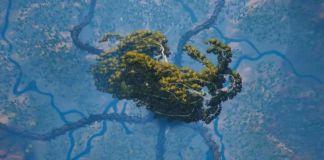 New Biomutant Trailer
