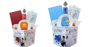 harry potter looksee boxes